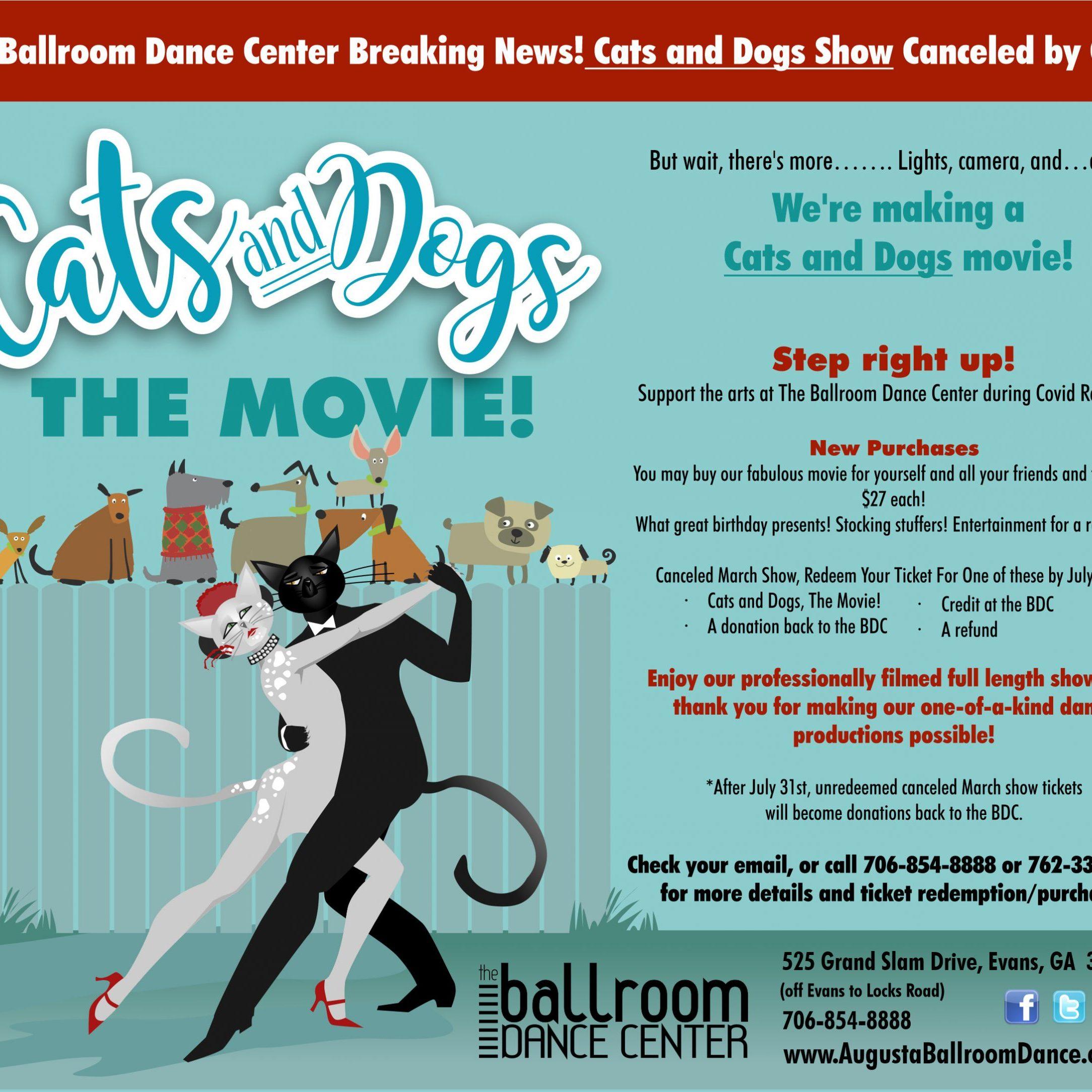 BDC020catsanddogsMOVIEsocialmedia (1)